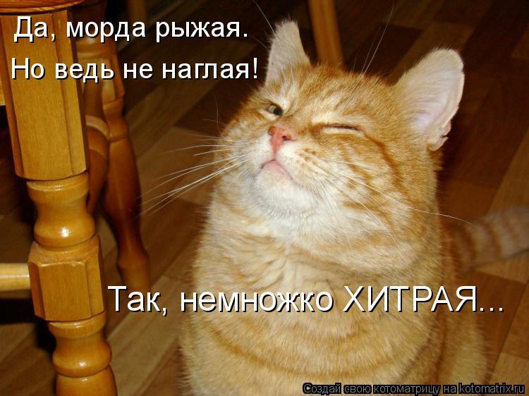 http://www.odlr.ru/radioclub/morda.jpg